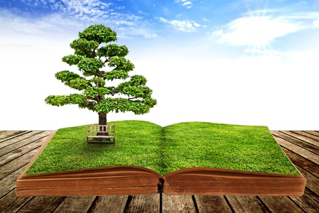 The big tree growth from a book with beautiful sky background photo