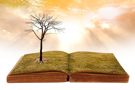 Creative concept image global warming concept. dry land on the open book. photo