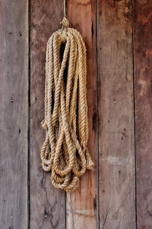 coiled: Hemp rope coiled hang on wood board Stock Photo