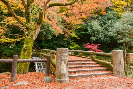 Minoo Park in Autumn season, Minoh, Osaka prefecture, Kansai, Japan
