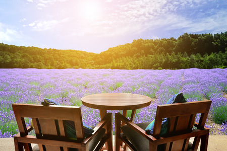Stock Photo   Table And Chairs Outdoors On Lavender Field Background With  Sunlight