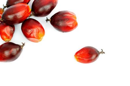 Palm oil.