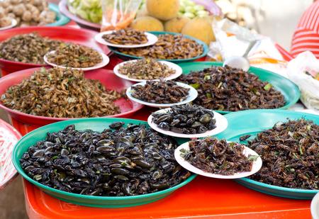 gusanos: Comida asi�tica ex�tica. Gusanos fritos y langosta