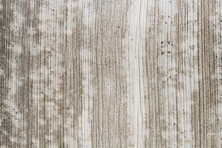 sheath: Old palm leaf sheath background texture pattern.