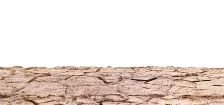 barren: Barren ground or cracked soil pattern.
