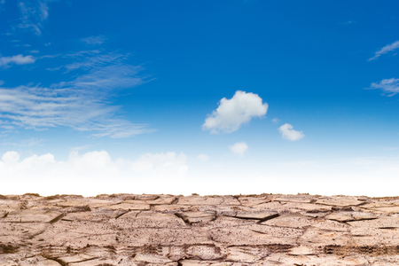 barrenness: Barren ground or cracked soil pattern.