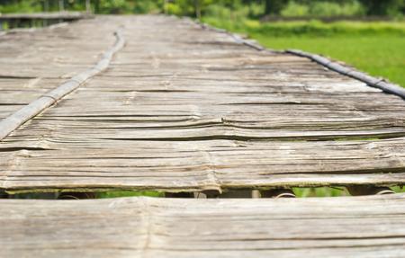hon: Vintage bamboo bridge on rice field.