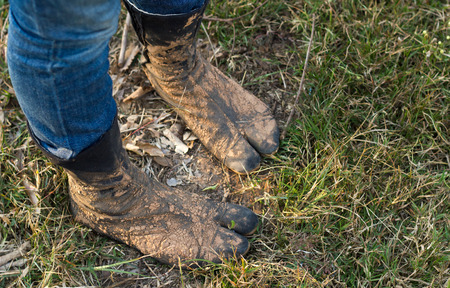 dirty feet: Feet in dirty socks for farming.