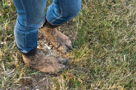 pieds sales: Les pieds dans des chaussettes sales pour l'agriculture.