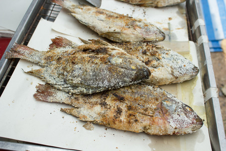 coal fish: Grilled fish with salt. Stock Photo