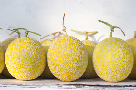 melons: Fresh melons. Stock Photo