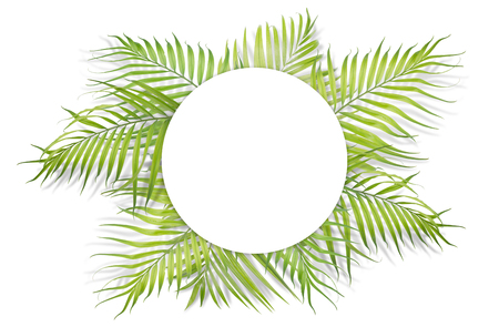 Tropical palm leaves with white paper on white background. Minimal nature. Summer Styled.  Flat lay.  Image is approximately 5500 x 3600 pixels in size. Stock Photo