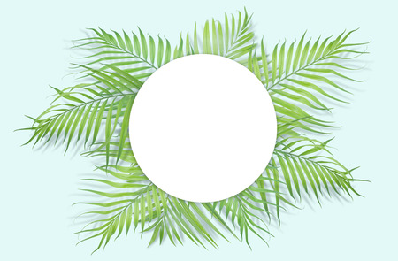 Tropical palm leaves with white paper on light blue background. Minimal nature. Summer Styled.  Flat lay.  Image is approximately 5500 x 3600 pixels in size.