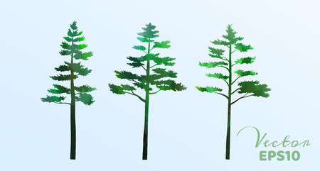 Set of watercolor pine trees . Vector illustration. Archivio Fotografico - 122977659
