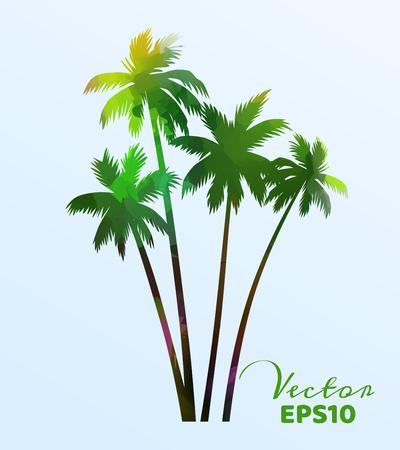 Insieme delle palme dell'acquerello. Pianta di cocco isolata. Illustrazione vettoriale.