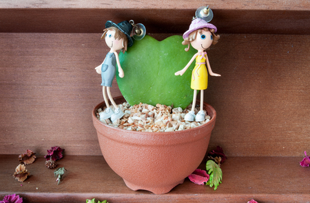plant nature: boy and girl earrings   inlove with heart-shaped plant in a flower pot