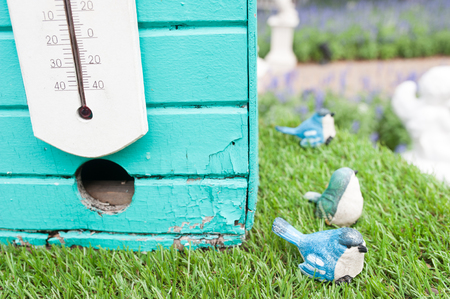 Old blue bird house with grass field