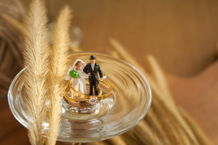 gold wedding rings on the wood with flower grass