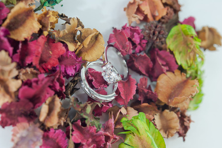 potpourri: The ring engage on dry Potpourri (selective focus)