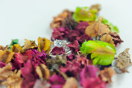 The ring engage on dry Potpourri (selective focus)