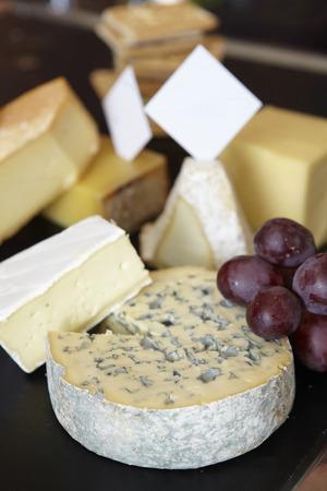 queso de cabra: Grupo de queso en la mesa