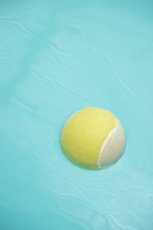 Tennis ball in dogs pool photo