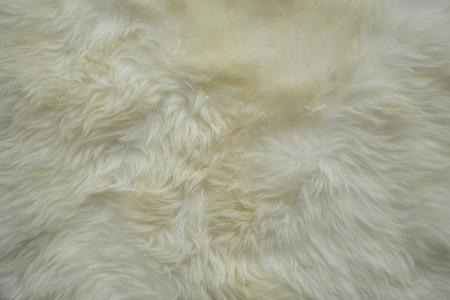Cream-coloured fur carpet background Stock Photo