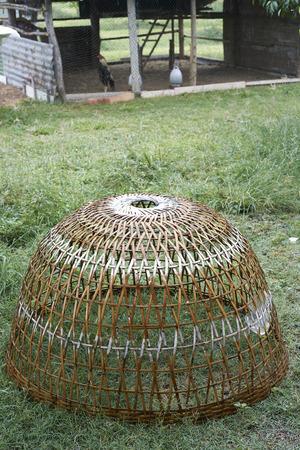 coop: Thai style chicken coop on ground
