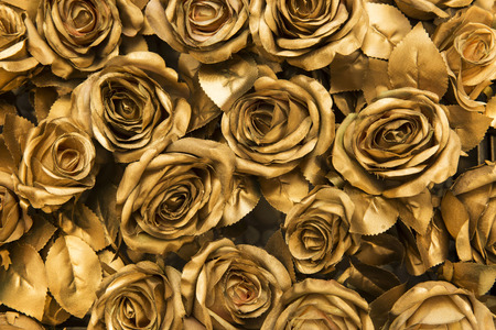 Golden fabric roses background