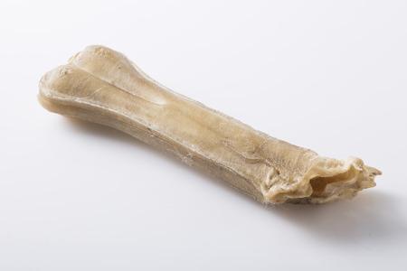 dog treat: Eaten dog treat bone on background Stock Photo