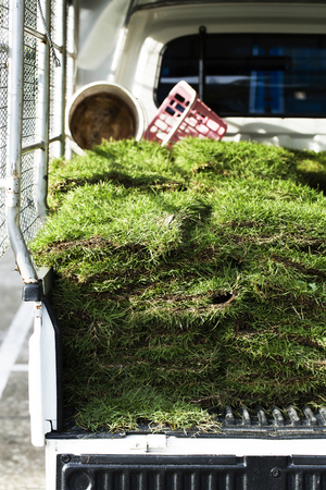Grass stacked for land decoration on truck Stock Photo