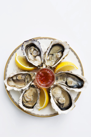 A platter of fresh organic raw oysters on sea salt