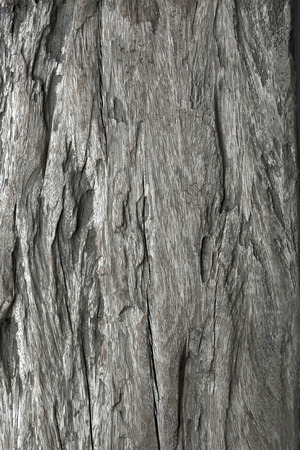 Close up of aged wooden texture background