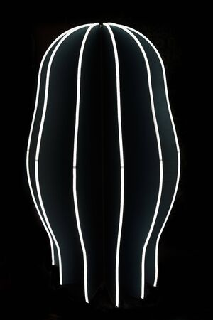 Neon light in cactus shape on black background
