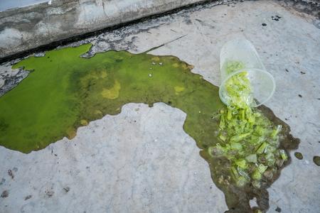 Iced green tea spilled on the floor