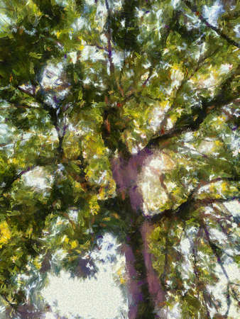 Perennial trees with large green shrubs Illustrations creates an impressionist style of painting.