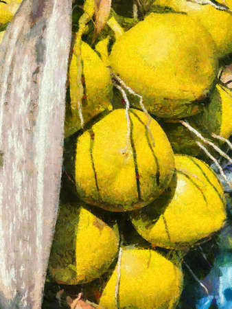 Coconut trees and coconuts Illustrations creates an impressionist style of painting. Banque d'images
