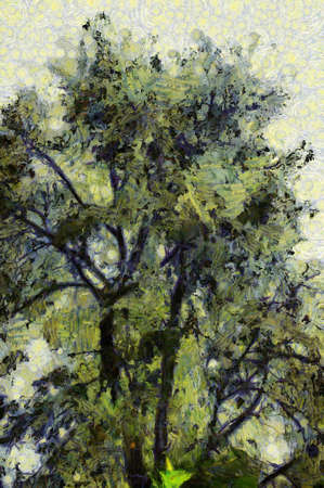 Trees and branches Illustrations creates an impressionist style of painting.