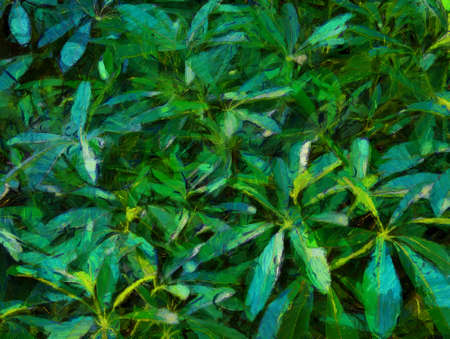 Leaves that look like multiple lobes Illustrations creates an impressionist style of painting.