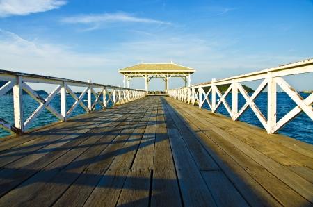 Bridge in wooden sea