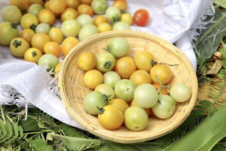 Tomato fruits on white bag and basket Reklamní fotografie