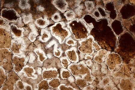 background and texture wall surface