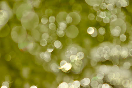 Blurred images and bokeh made from water droplets in green tones