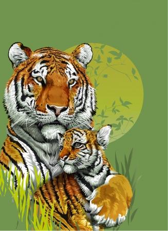 Тигр и ребенка тигра в джунглях Фото со стока