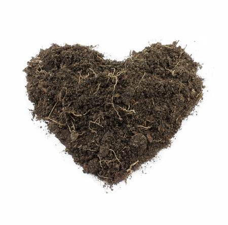 Heart-Shape Soil Isolated on white background. photo