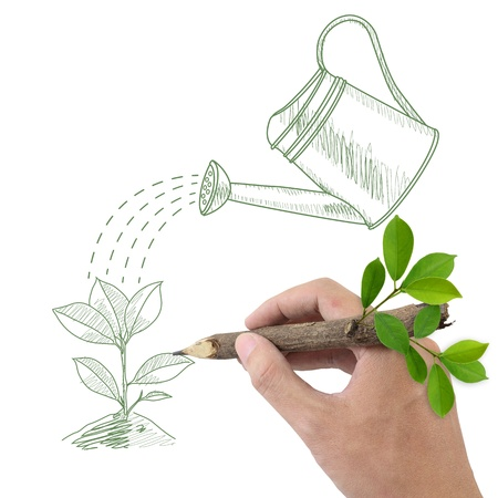 Male hand drawing green plant and watering can  Stock Photo - 13927011