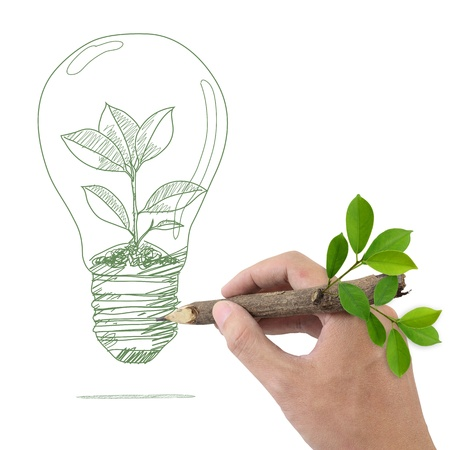 environmental issues: Male hand drawing tree in a light bulb