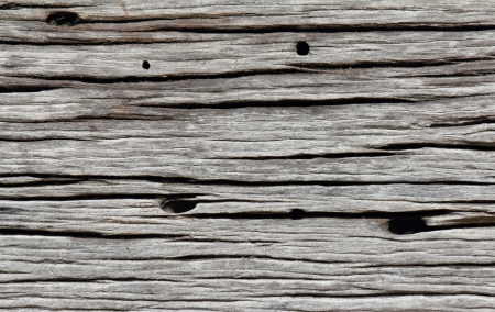 old wooden texture background. photo