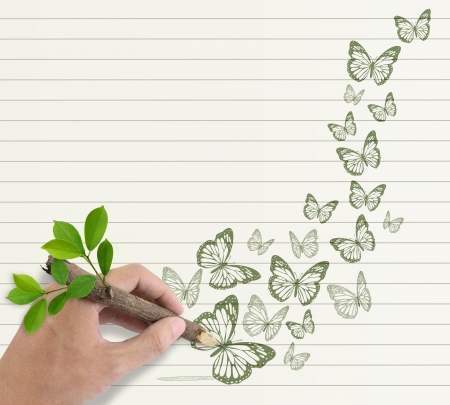 Male hand drawing butterfly on paper background  photo