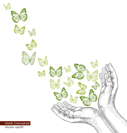 assist: Drawing Hands releasing butterfly. Vector illustration Illustration